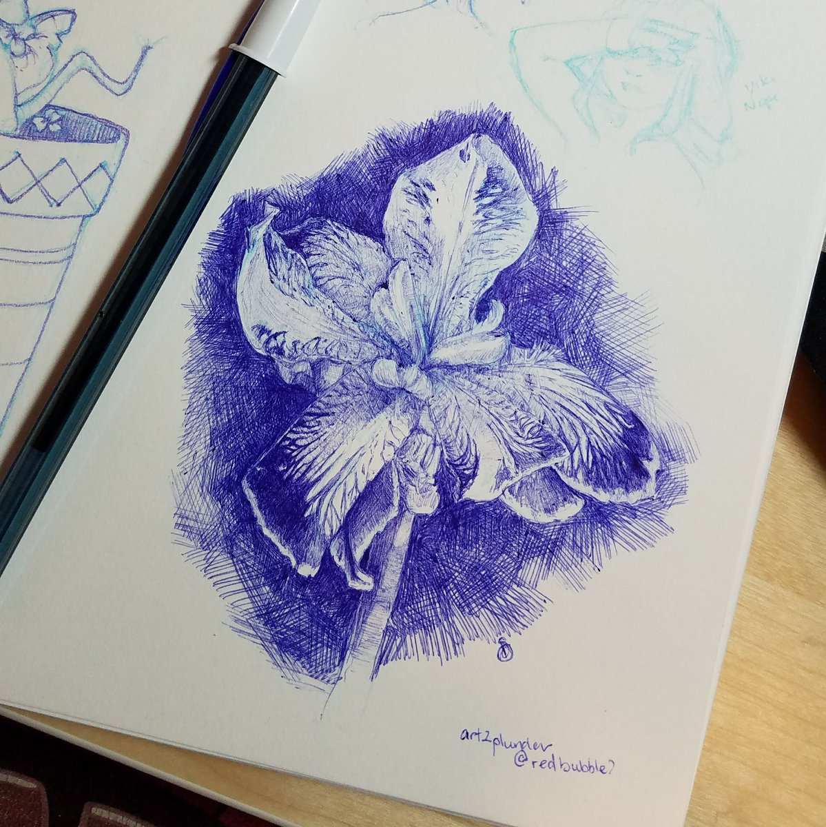 ballpoint pen value study of a japanese iris