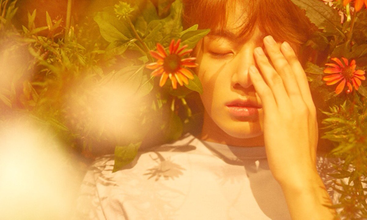 Concept Bts Love Yourself Ae Her Special Release Photos