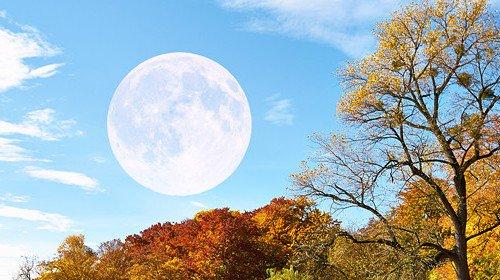 Лунный календарь характеристика дня