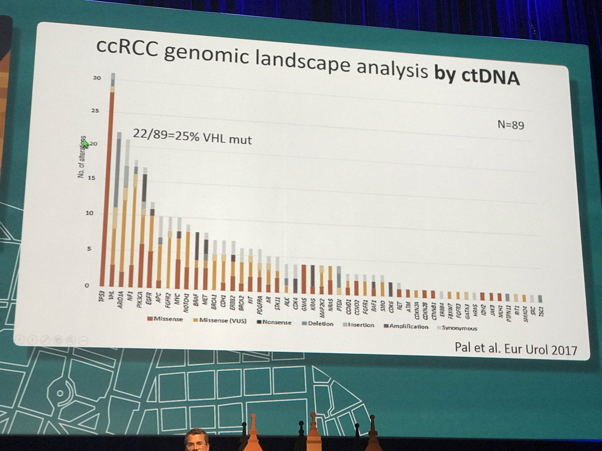 Largest data set for ctDNA in renal cell carcinoma - key to future of precision medicine #ESMO2017 @montypal<br>http://pic.twitter.com/qYDeIeMpSs