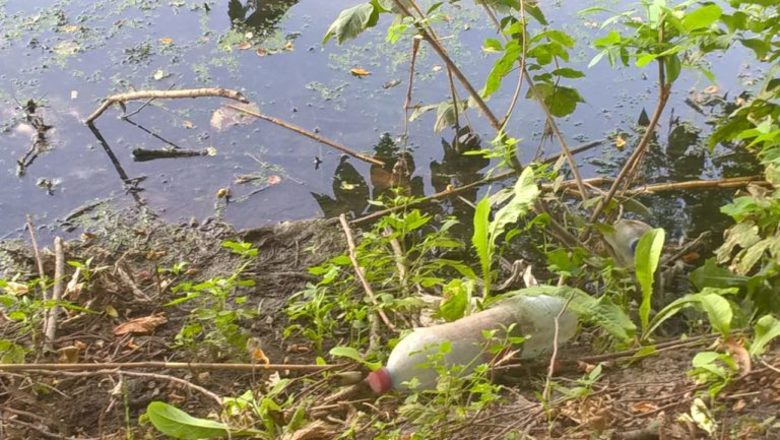 Загрязнение азовского моря реферат
