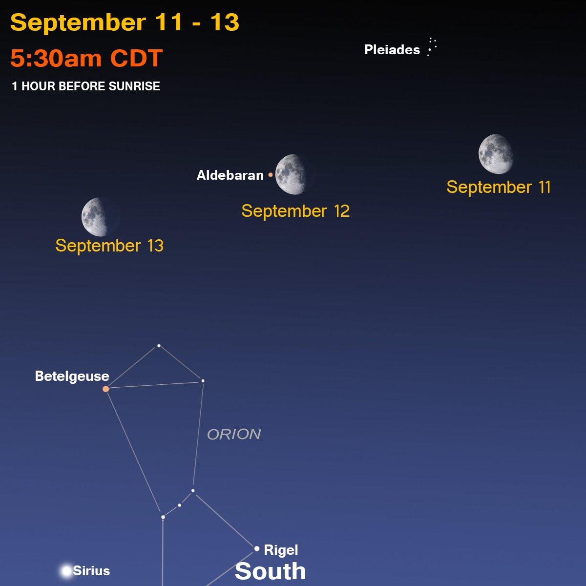 Mpm Planetarium Dept On Twitter Orion Is Back Sirius Too Aka
