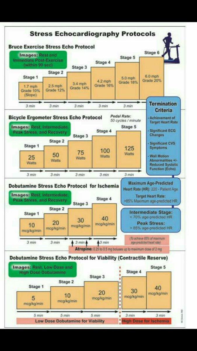 Stress echocardiography protocols #Cardiology #FOAMed #CardioEd