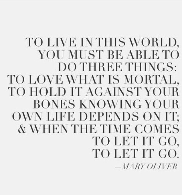 Happy belated birthday for yesterday Mary Oliver
