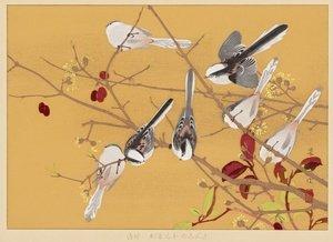 #WorkoftheWeek &quot;Early Autumn: #Birds on Pepper Tree&quot; #woodblock print by Tsuchiya #Rakusan #japan #japaneseart More:  https:// artmuseum.indiana.edu/online/highlig hts/view/entries/133 &nbsp; … <br>http://pic.twitter.com/C9NXSQHXND
