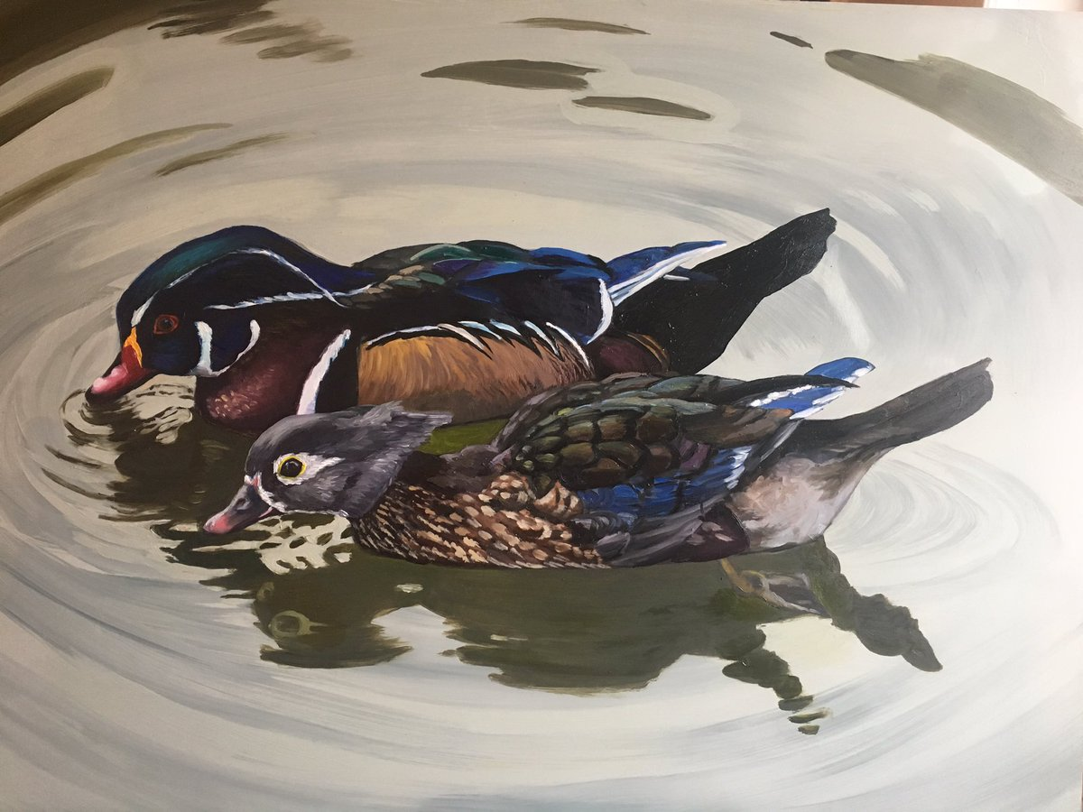 Almost done. Wood Ducks oil on Masonite 24 x 36 will be for sale when complete #woodducks #duckhunter #artforsale #ArtistOnTwitter #painting<br>http://pic.twitter.com/lNWs02bXy1