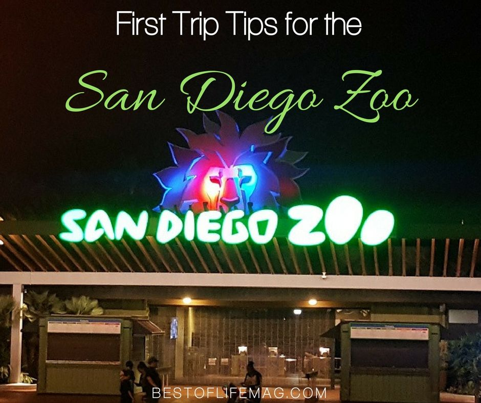 Traveling to the San Diego Zoo? These one day travel tips will help! https://t.co/7fgId2XSPq https://t.co/U53DNaTkho