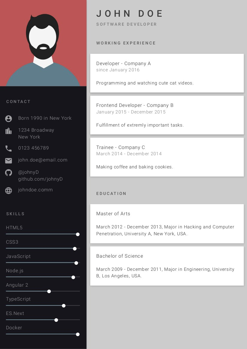 the best cv ever