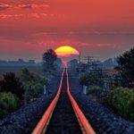 「父は毎年、線路全体に太陽が反射するタイミングを待っている…今日がその日だった」 と投稿された写真が…