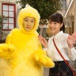 三津谷です。18(月・祝)夜10時放送の「LIFE!」は、連続テレビ小説「ひよっこ」とのコラボコント…