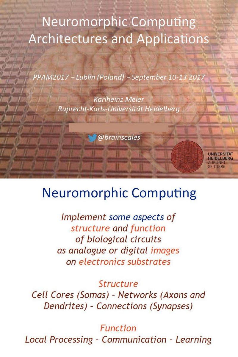 book Biological Psychology