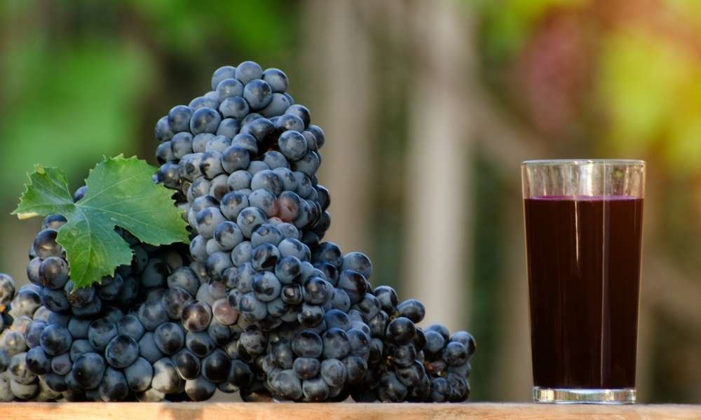 Just published a new article: Making Grape Juice with A Juicer – Recipe and Tips  https:// goo.gl/bHtyax  &nbsp;   #Health #Consuming #JuicingTips<br>http://pic.twitter.com/ohrYvvd7A6