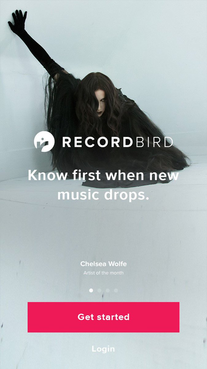 record bird recordbird com twitter