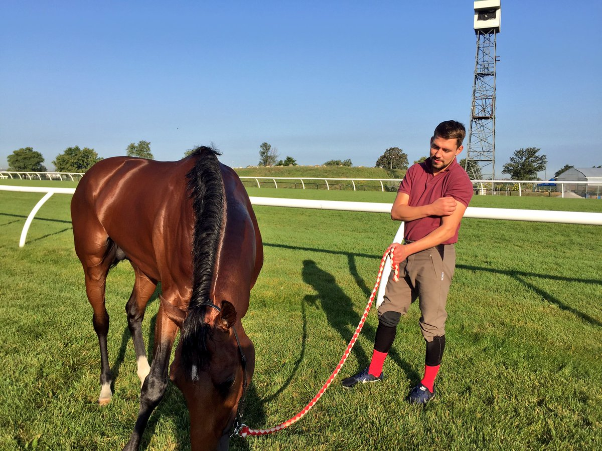 Mondialiste has settled in well ahead of his run in the Woodbine Mile.