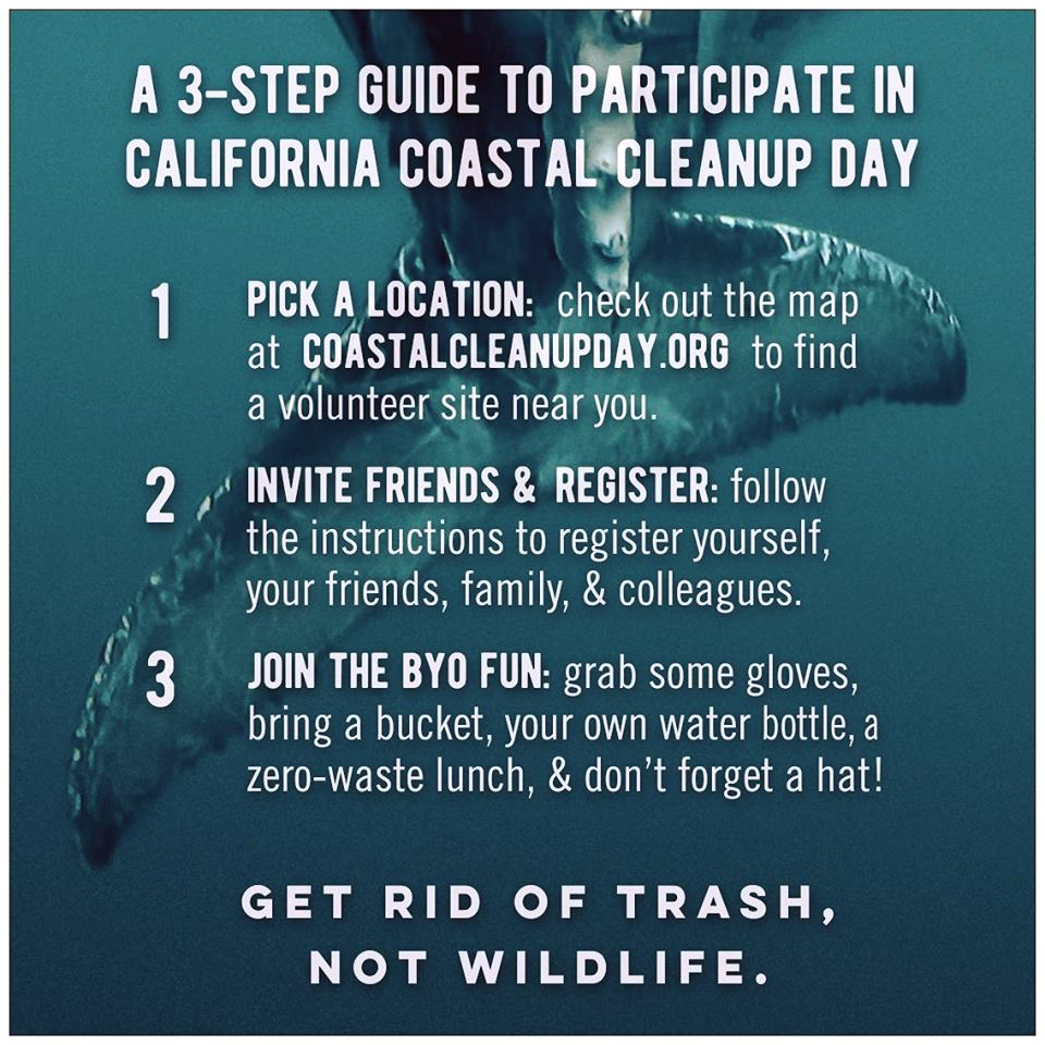 Everything you need to know about how to participate in #CoastalCleanupDay this Saturday: https://t.co/bzRZzgVQ45 https://t.co/aTThGvb6lL