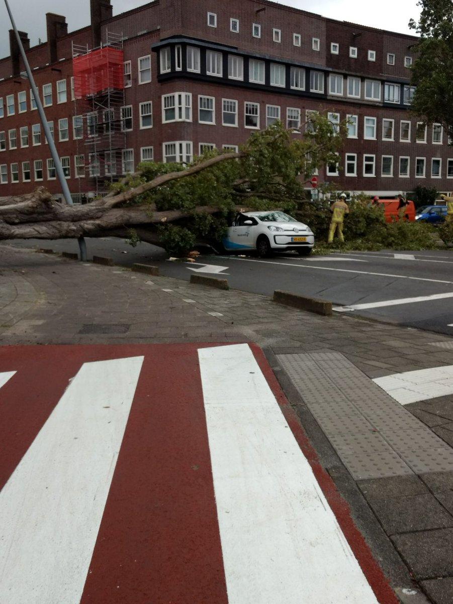 Gewonden Door Ontwortelde Bomen Windstoten Tot 126 Km Per Uur Nos