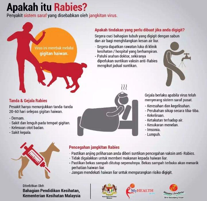 11++ Gigitan anjing rabies terbaru