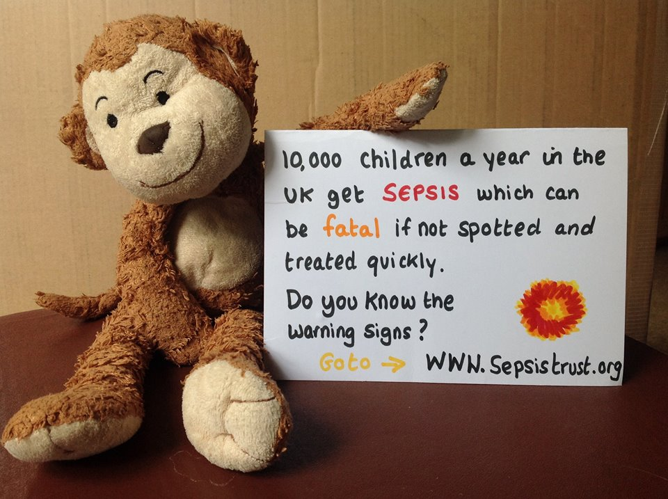 Monkey doing his bit for #WorldSepsisDay Just ask &quot;Could it be Sepsis?&quot; @UKSepsisTrust<br>http://pic.twitter.com/R590RcpnkA