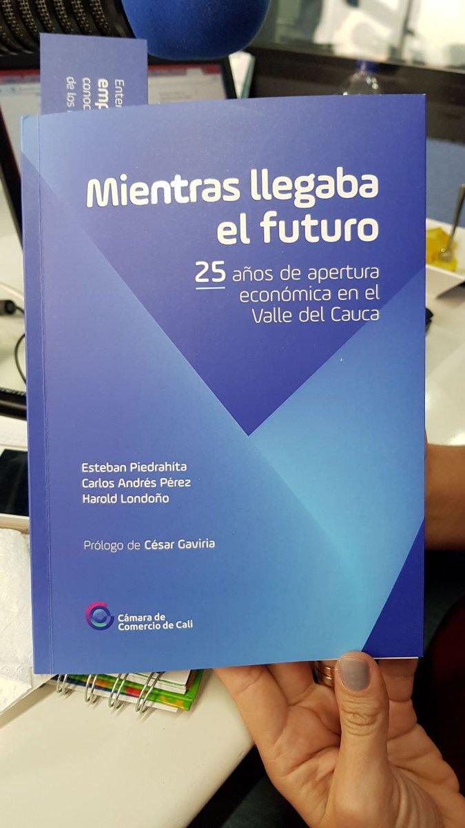 Image result for Mientras Llegaba el Futuro