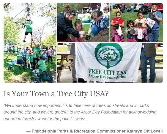 TreePhilly photo