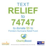 100% of all proceeds for RELIEF will get to those in need. From the Keys to 305 to 904. Donate $5 to show Florida Love. Thank you! #RELIEF