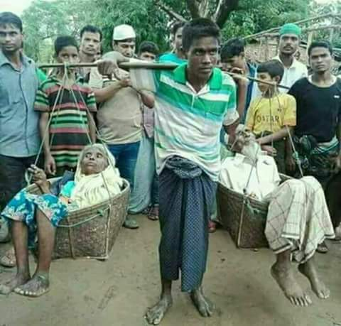 #Rohingyaterrorreality Latest News Trends Updates Images - 25_mashiyi