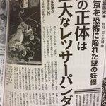 雑誌『ムー』の「妖怪の裏面史 平安京を恐怖に陥れた謎の妖怪  鵺の正体は巨大なレッサーパンダだった」…