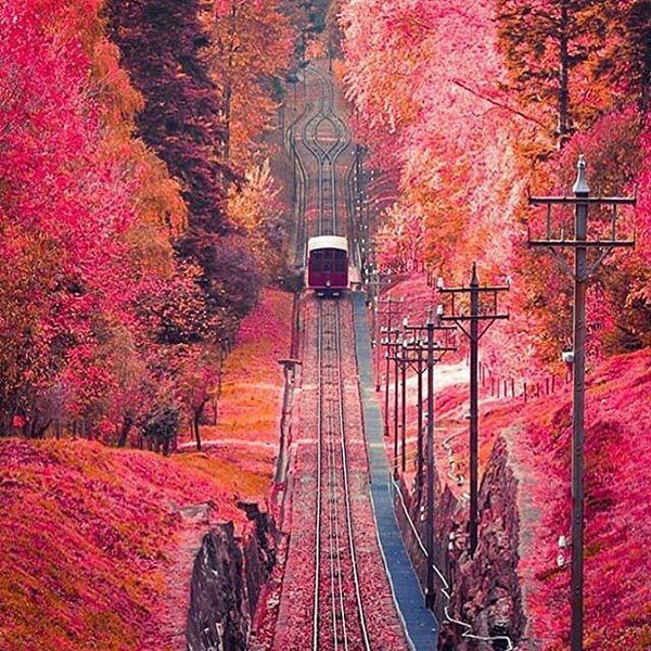 Rails over stunning #Landscapes of our beautiful #Earth <br>http://pic.twitter.com/7dmYeJUKx5