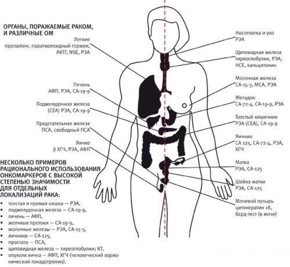 смотрите всё что значит онкология тебя нет