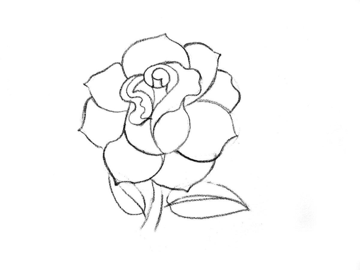 легкие рисунки роза по порядку настоящее время