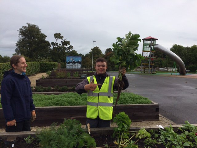 Great work at our HYG Garden, Well Done on growing this &#39;huge&#39; parsnip!! #hyg #thejeelypiece #vegetables #gardening @TheJeelyPiece<br>http://pic.twitter.com/SbdKKzRTVq