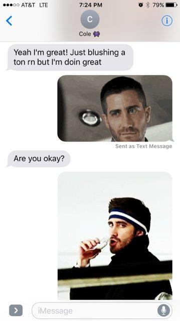 Gyllenhaal jake not