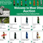 Remember you can still bid to adopt an otter on our online auction site (closes 4th Oct 6pm):  @moorotters https://t.co/giu3bRLCWv