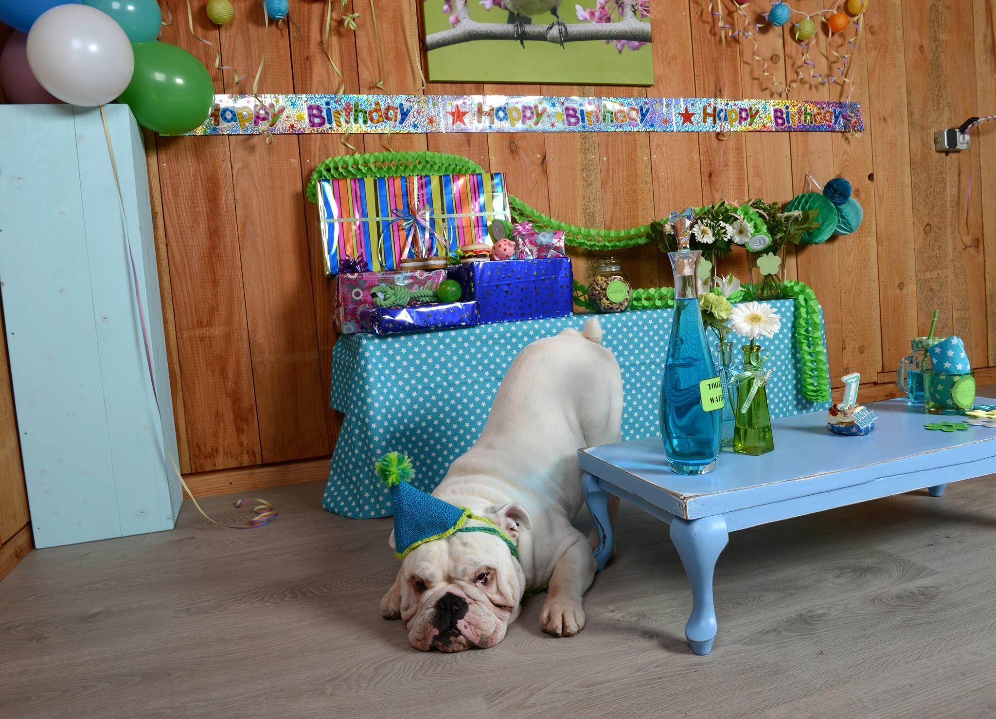 happy birthday big boy!! Hope you\re having a blast