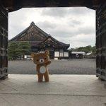 【リラックマ】おはようございます。本日より「リラックマごゆるり京都」。ここ二条城のスタンプポイントに…