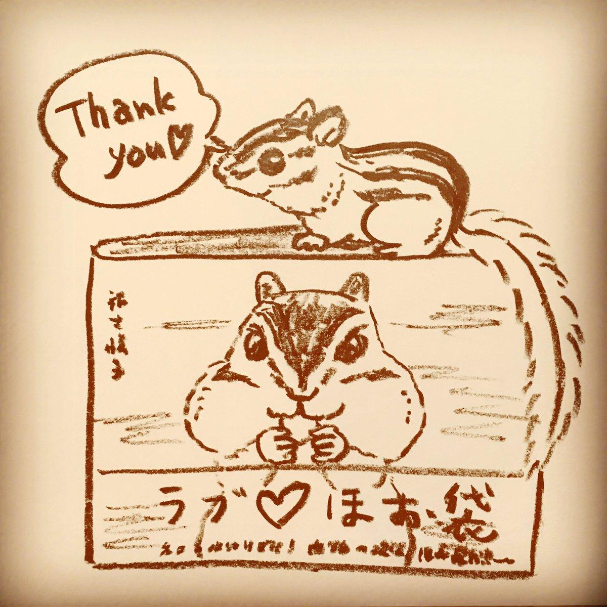 """福士悦子@11/9〜高円寺でイベントりすカフェ開催 on twitter: """"おやすみ"""