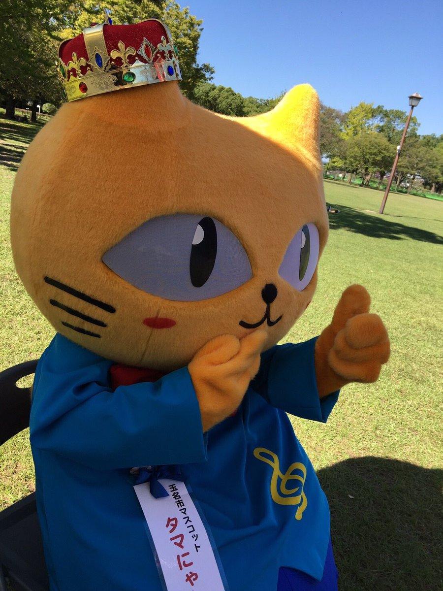 #熊本キャラフェス2017  に行って来たにゃーーーん!!!いっぱいのお友達と絡めたにゃん!まだまだ写真あげていくから楽しみに待っててにゃん❣️