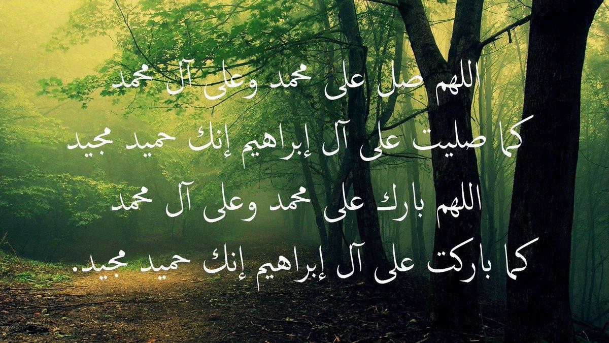 سجلوا حضوركم بالصلاة على محمد وآل محمد - صفحة 17 DK1_mN3XoAAxqrj