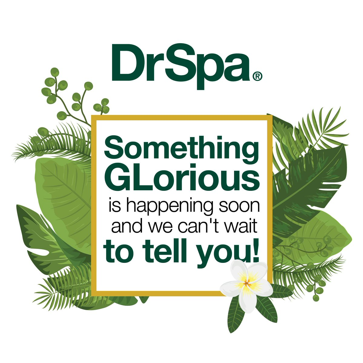 We have exciting news coming soon and we can't wait to share it with all of you!  #DrSpa #excitingannouncement https://t.co/Aa2wuemswe