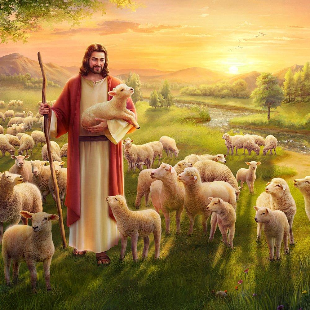 Смешных котиков, христианские картинки аминь