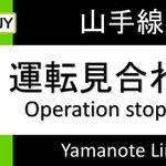 山手線の運転見合わせの原因は鳥w高田馬場で駅員さんが鳥を相手に奮闘!