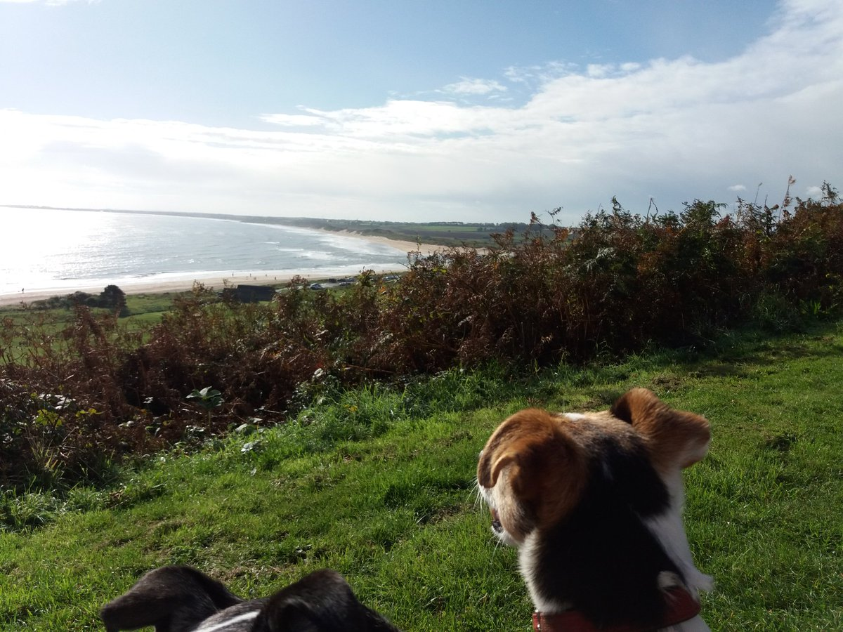 Will never tire of this view #although #Northumberland @alnwickgazette @AlnmouthVillage @2northumberland @NTNorthd_Coast #ZSHQ #TheAlnwick3<br>http://pic.twitter.com/iOvfjMkB46