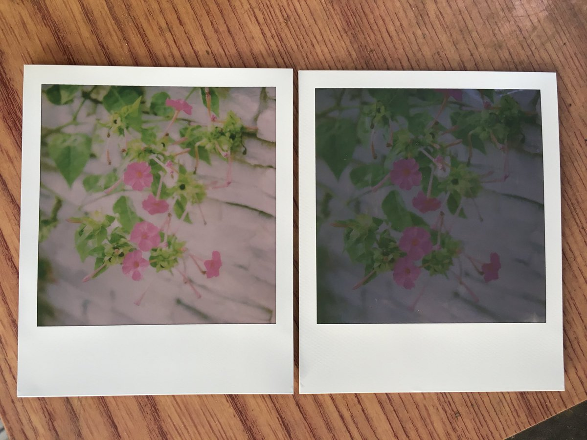 1枚目  左 #PolaroidOriginals  現像時間が半分に短縮された。 撮った直後から像が現れ始める。  右 #IMPOSSIBLEPROJECT  撮って5分後、像が現れ始めた段階。  2枚目 ポラロイドが追い抜く。