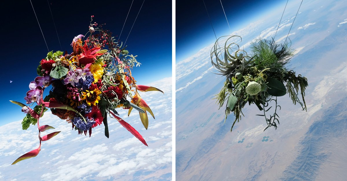 a japanese artist has launched bouquets of immaculately arranged flowers into space: https://t.co/ID74xDADVe https://t.co/zAEq4zroyT