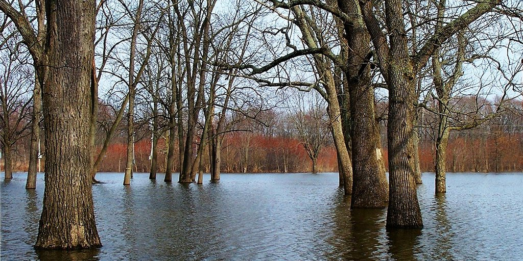 Apply by Friday for @NERCscience Advanced training short course in natural #flood risk management  http://www. lancaster.ac.uk/media/lancaste r-university/content-assets/documents/lec/pg/flyer_NFRM_2017.pdf &nbsp; …  … #ECRs #PhD<br>http://pic.twitter.com/UWjUv0cuzJ
