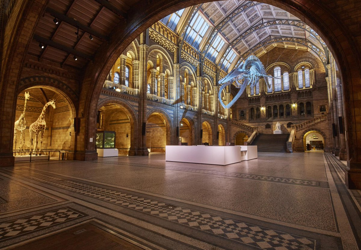 An epic battle erupts between @sciencemuseum + @NHM_London during Twitter&#39;s #AskACurator day  http:// dogroup.co/2w43juO  &nbsp;  <br>http://pic.twitter.com/tEguqWdURx