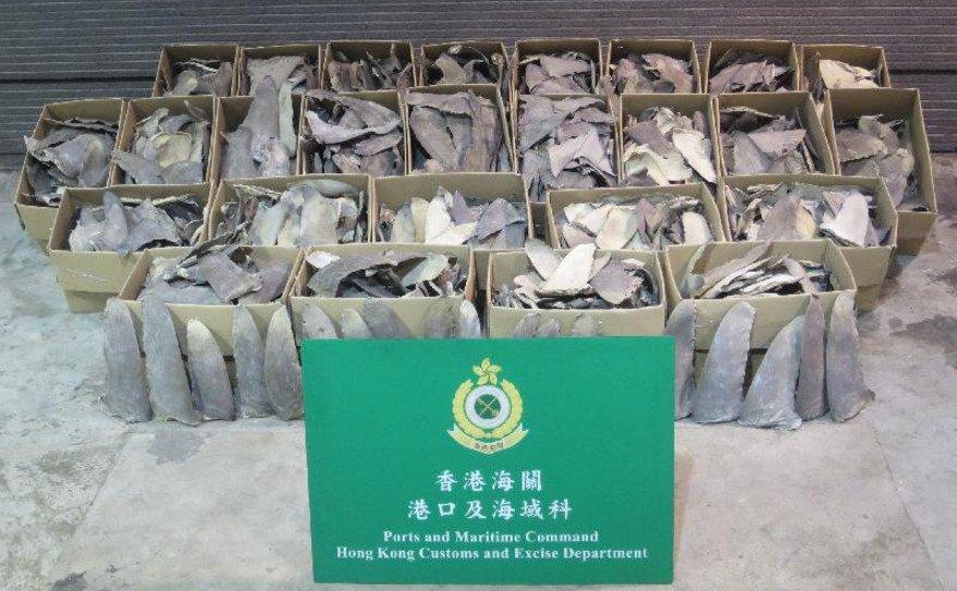Hong Kong: 350 kg of #shark fins from hammerhead &amp; oceanic whitetip #sharks seized,  #CITES authority to investigate  https:// goo.gl/WCgyGB  &nbsp;  <br>http://pic.twitter.com/m8YdTrz7XD