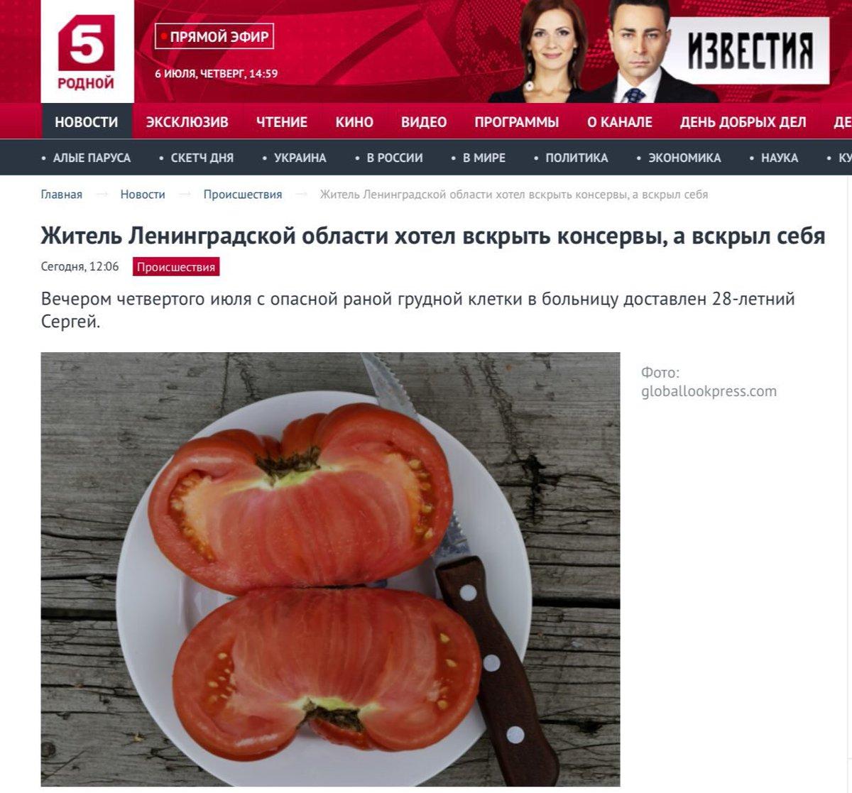 Катя семенова твиттер