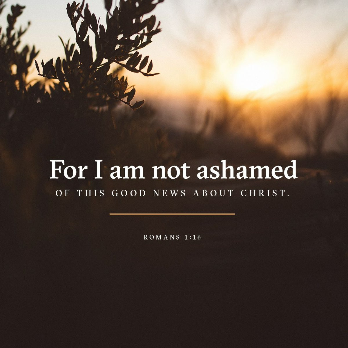 For I am not ashamed of the gospel, for it is the power of God for salvation to everyone who believes...#BSF17 <br>http://pic.twitter.com/7IcNyGaJL8
