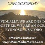 MauiMediaMaven